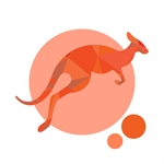 Digital Roo logo