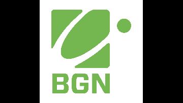 Bspoke Global Networks logo